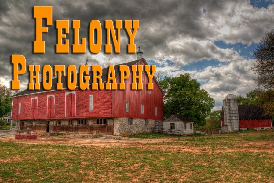 FelonyPhoto